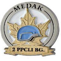 Battle of Medak Lapel Pin