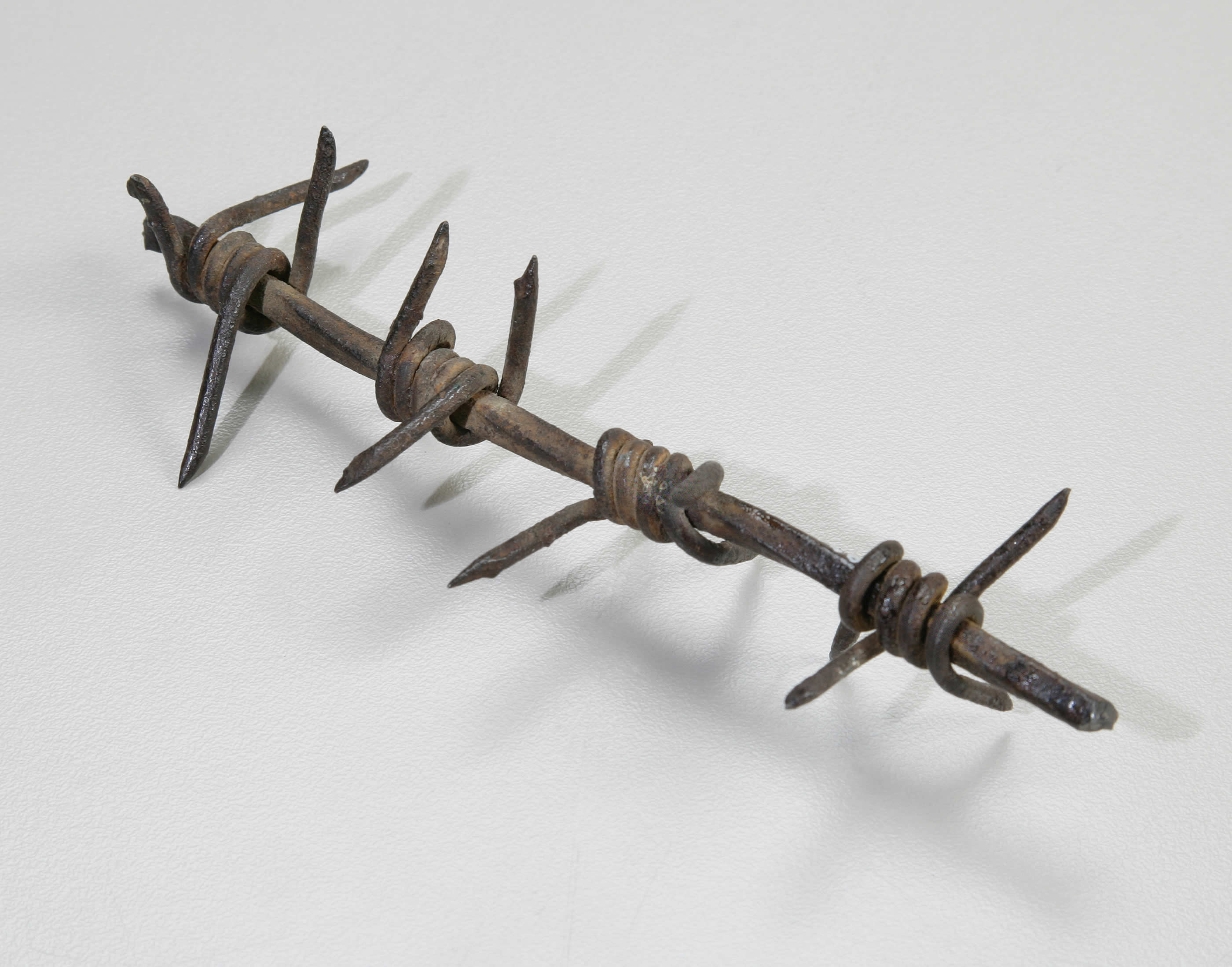 Barbed Wire from Vimy Ridge