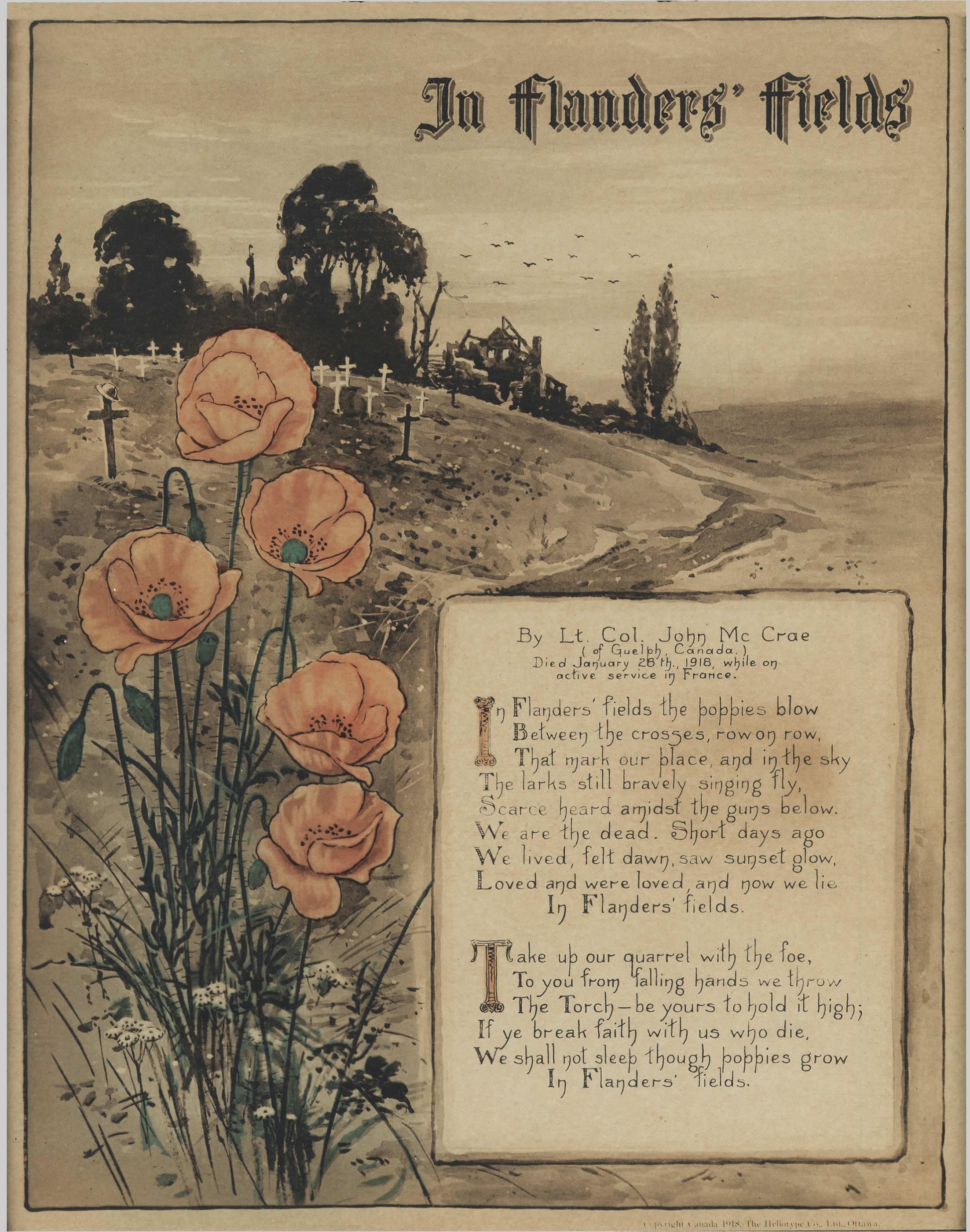 In Flanders' Fields