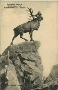 Caribou at Beaumont Hamel