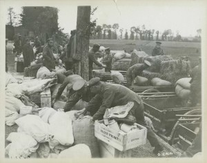 Loading Rations for the Front