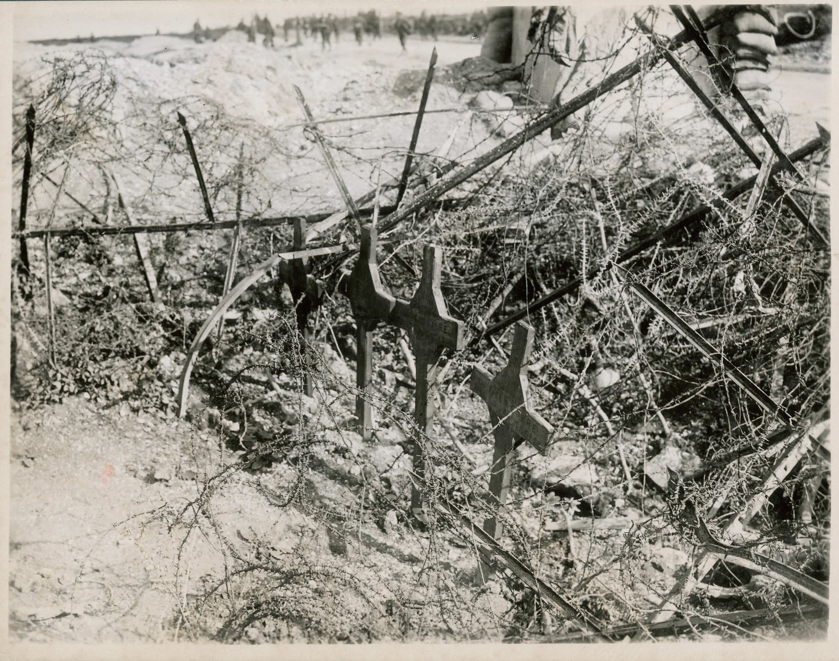 Beneath Barbed Wire