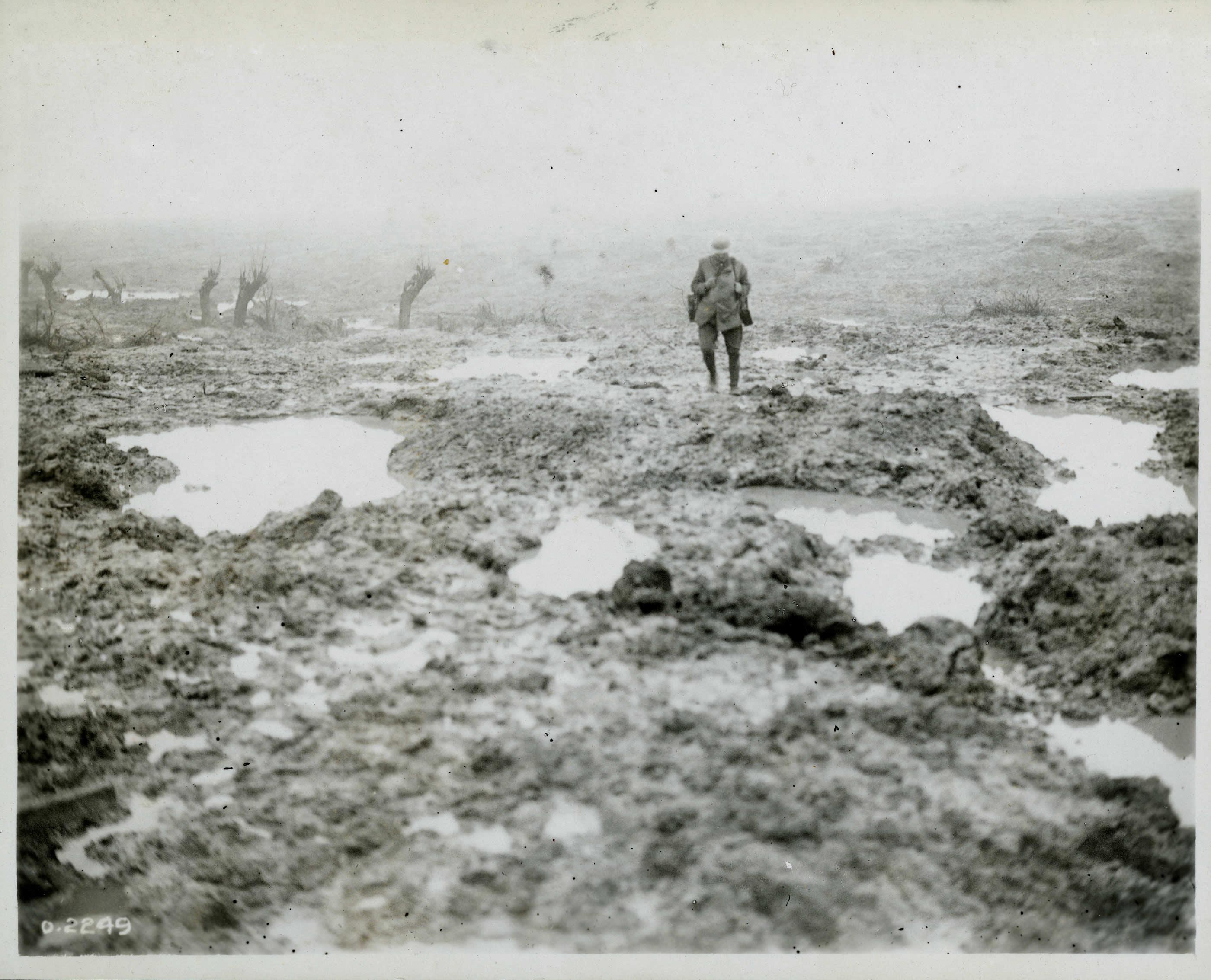 A Field of Mud