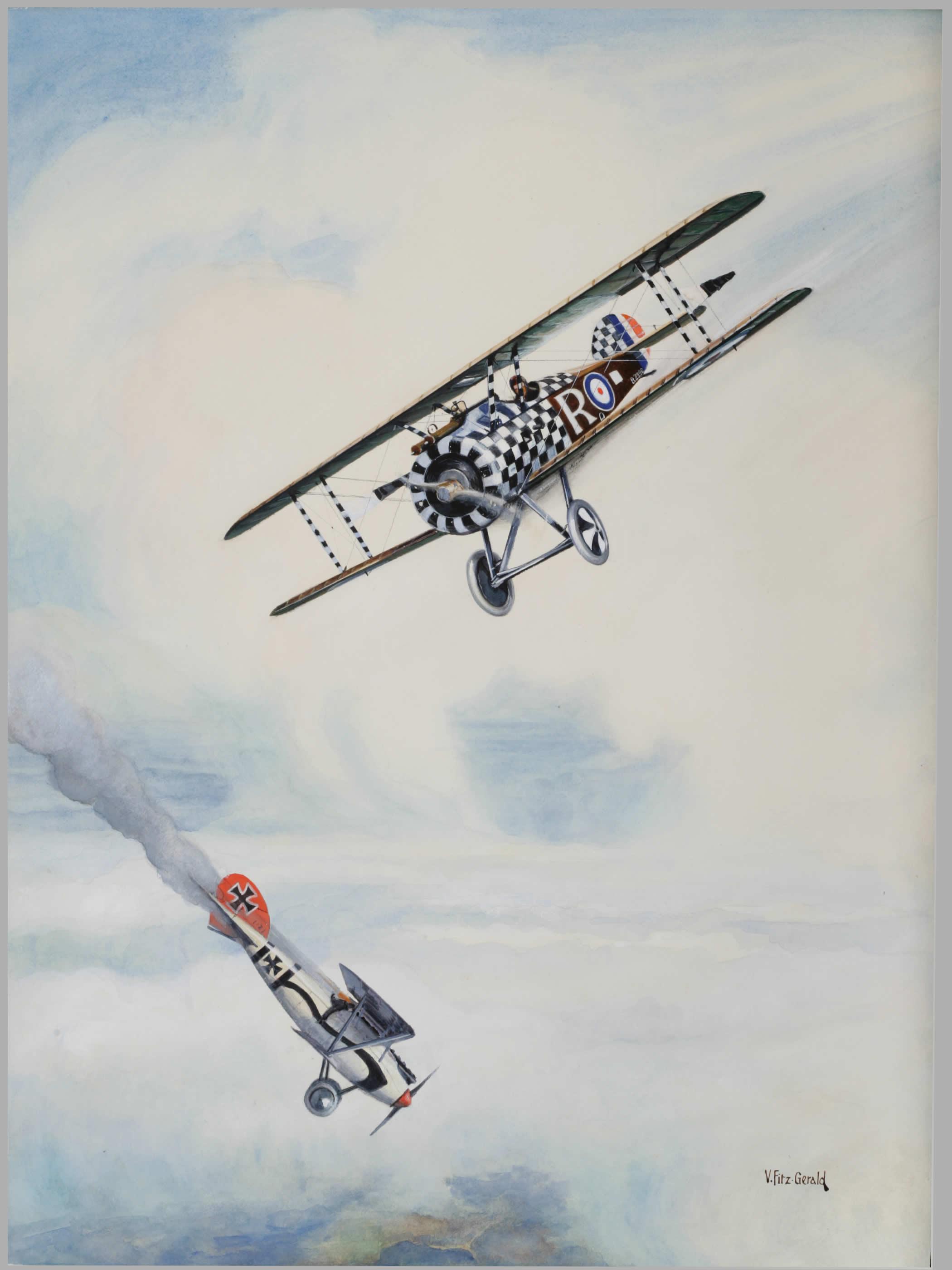 <i>Action Over Italy, 1918</i>