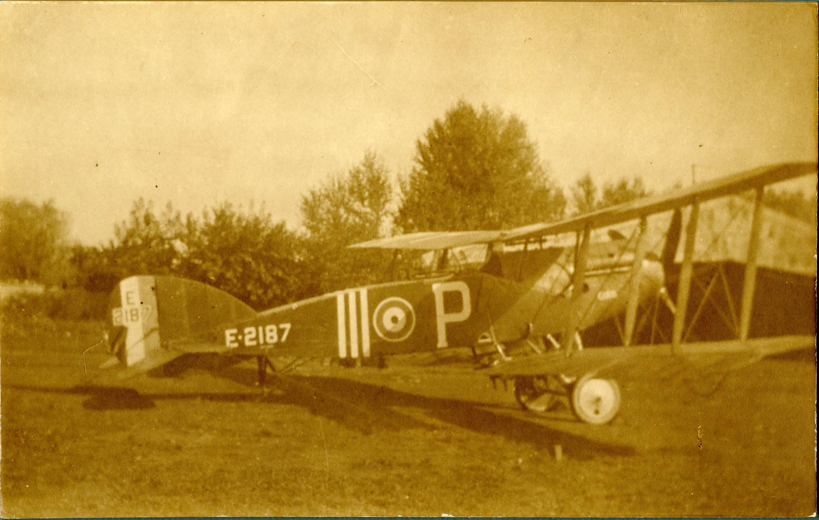 Bristol Fighter Aircraft