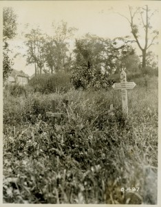 Untended Canadian Graves