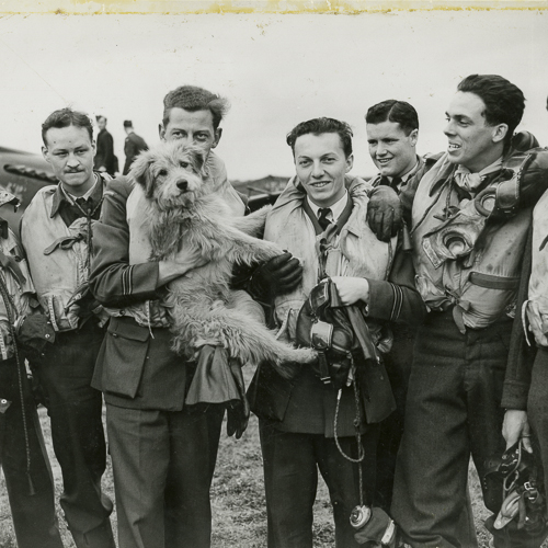 Eight air force members all wearing lifejackets, stand together for a photo with their mascot, a dog.