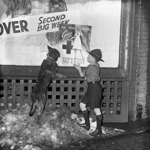 A Boy Scout, with his dog, hangs a propaganda poster outside.