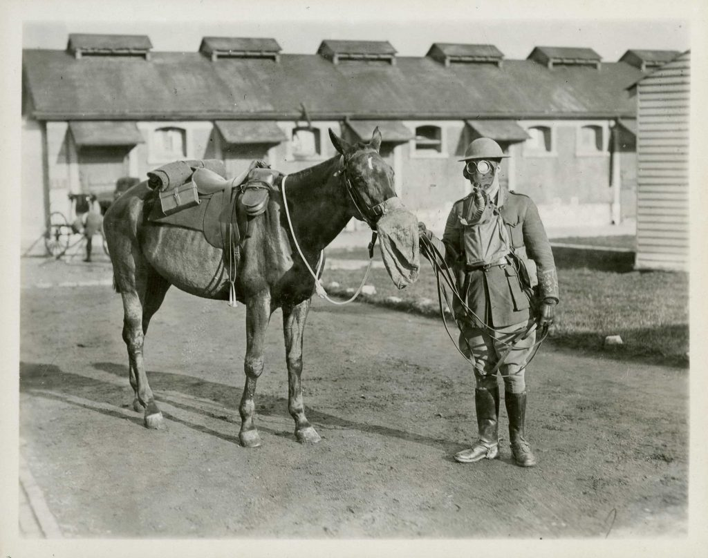 A uniformed man wearing a gas mask holds the lead of a horse, also wearing a gas mask.